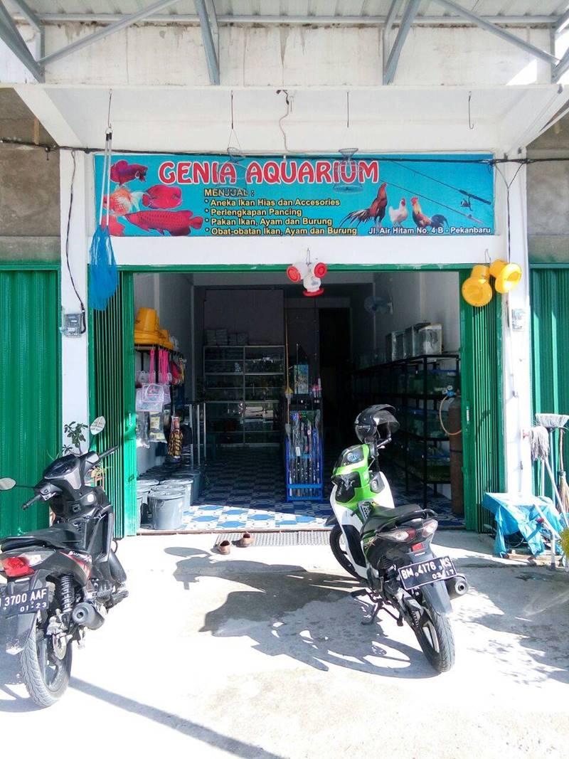 Genia Aquarium 2