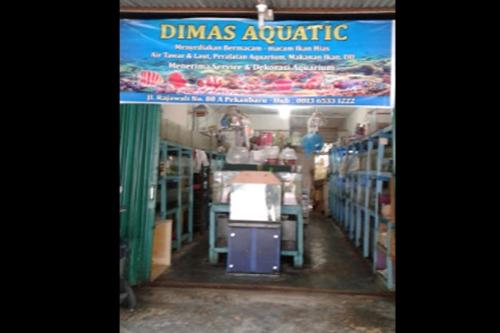 Dimas Aquatic Pekanbaru 1 - Dimas Aquatic Pekanbaru