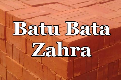 Batu Bata Zahra 1 - Batu Bata Press Pekanbaru - Batu Bata Zahra