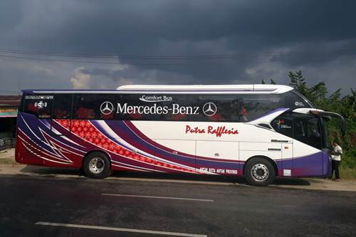 PT Raflesia Putra Prima (Putra Raflesia) - Bus Jurusan Pekanbaru Bengkulu Lubuk Linggau Medan Pekanbaru
