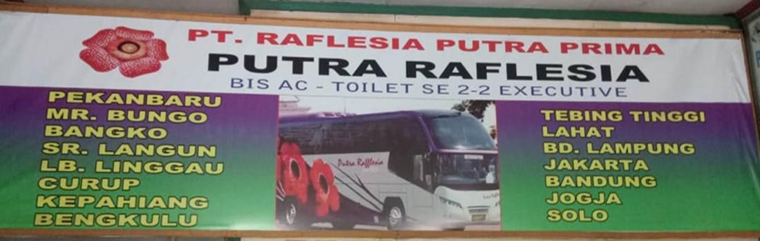 PT Raflesia Putra Prima Putra Raflesia 2 - PT Raflesia Putra Prima (Putra Raflesia) - Bus Jurusan Pekanbaru Bengkulu Lubuk Linggau Medan Pekanbaru