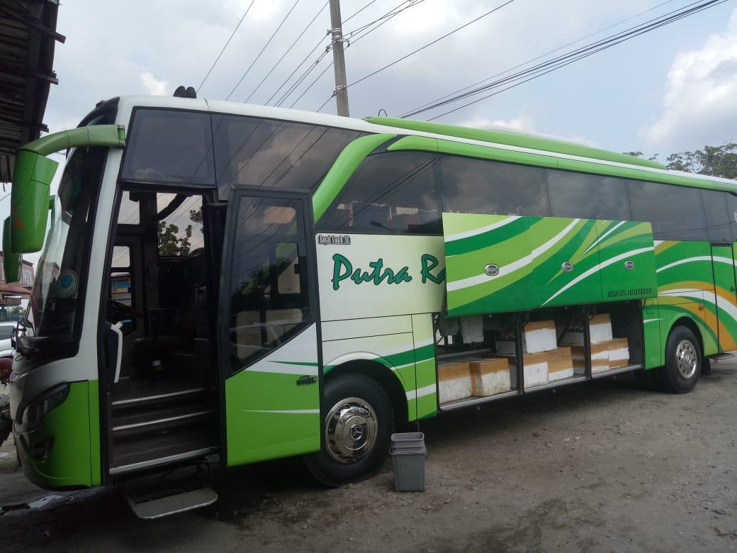 PT Raflesia Putra Prima Putra Raflesia 3 - PT Raflesia Putra Prima (Putra Raflesia) - Bus Jurusan Pekanbaru Bengkulu Lubuk Linggau Medan Pekanbaru