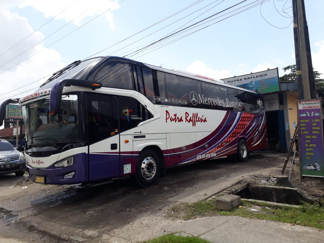 PT Raflesia Putra Prima Putra Raflesia 5 - PT Raflesia Putra Prima (Putra Raflesia) - Bus Jurusan Pekanbaru Bengkulu Lubuk Linggau Medan Pekanbaru